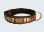 Fashion Dog Collars